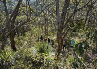 Mt George hike