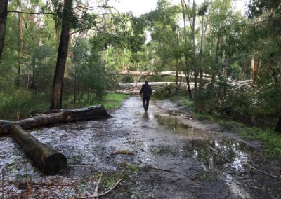 cox creek flood